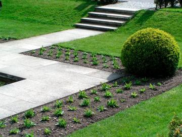 Садово-парковий газон